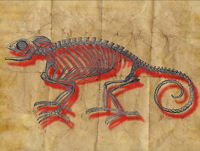 Jules Mixed Media - Red Chameleon by Marcus  Jules