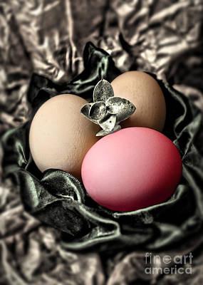 Photograph - Red Classy Easter Egg by Danuta Bennett
