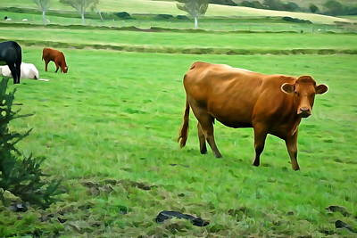 Art Print featuring the photograph Red Cow by Charlie and Norma Brock