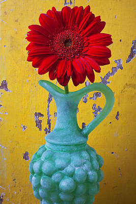 Yellow Grapes Photograph - Red Daisy In Grape Vase by Garry Gay