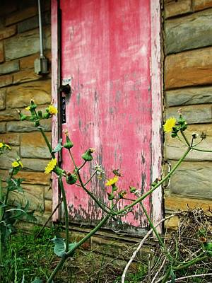Photograph - Red Door And Yellow Flowers by Todd Sherlock