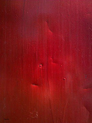 Photograph - Red by Eena Bo
