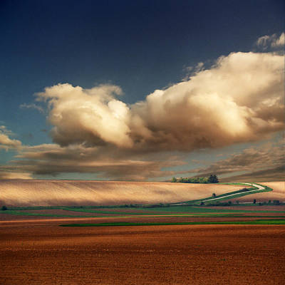 Y120831 Photograph - Red Field And Clouds by Katarina Stefanovic