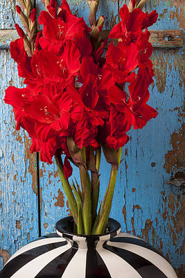 Red Glads Against Blue Wall Art Print by Garry Gay