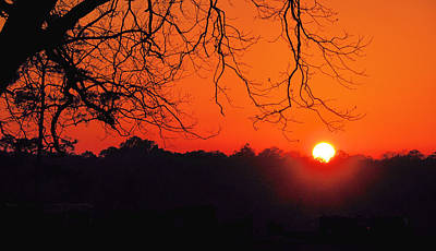 Photograph - Red Glow by Jan Amiss Photography
