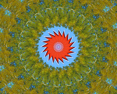 Photograph - Red Green Mandala by Bill Barber