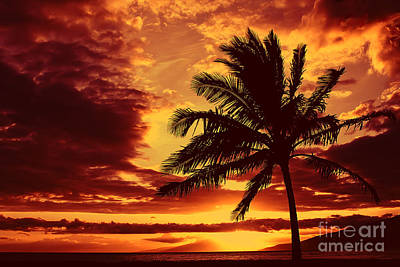 Red Hawaiian Sunset Art Print by Teresa Zieba