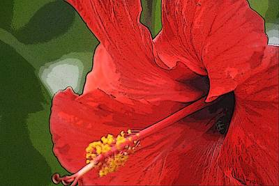 Art Print featuring the photograph Red Hibiscus by Donna  Smith