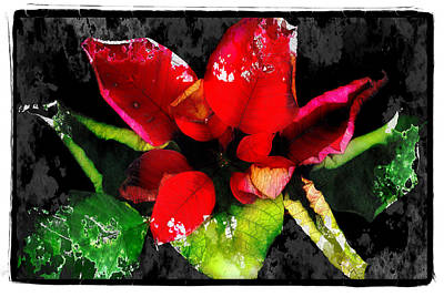 Red Leaves Art Print by Mauro Celotti