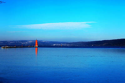 Park Scene Digital Art - Red Lighthouse In Cayuga Lake New York by Paul Ge