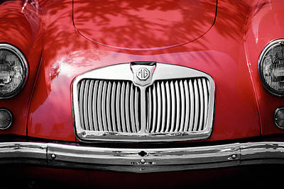 Photograph - Red Mg by Mark Greenberg