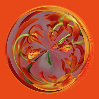 Photograph - Red Orange Orchid Orb by Bill Barber