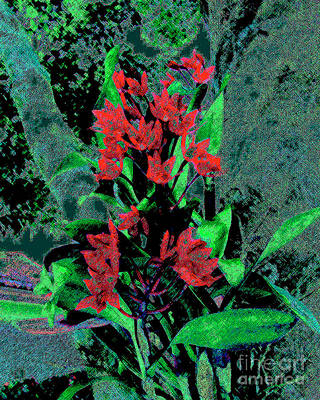 Photograph - Red Orchids On A Tree Digital Art by Merton Allen