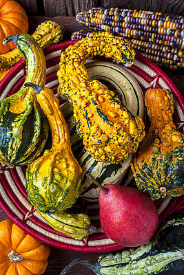 Red Pear And Gourds Art Print by Garry Gay