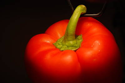 Photograph - Red Pepper  by Richard Bryce and Family