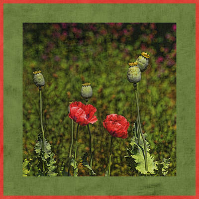 Red Poppies Print by Bonnie Bruno
