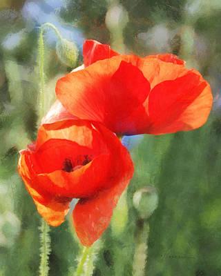 Digital Art - Red Poppies In Sunlight by Francesa Miller