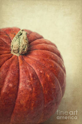 Warm Colors Mixed Media - Red Pumpkin by Angela Doelling AD DESIGN Photo and PhotoArt