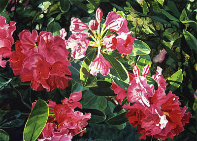 Painting - Red Rhodos by David Lloyd Glover