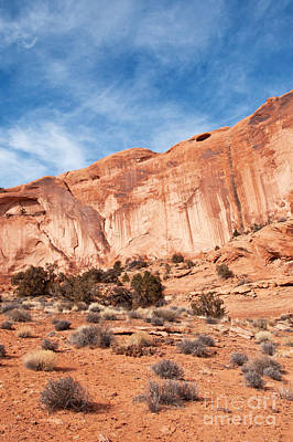 Red Rock And Blue Skies 2 Art Print by Bob and Nancy Kendrick