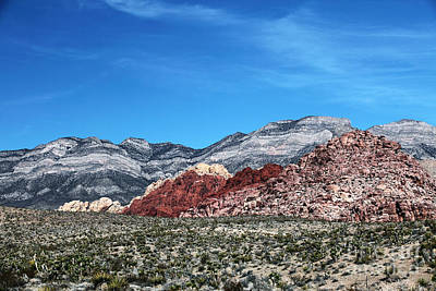 Photograph - Red Rock Canyon by John Rizzuto