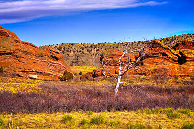 Photograph - Red Rocks Park Colorado V by David Patterson