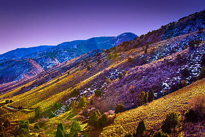 Photograph - Red Rocks Park Hillside by David Patterson