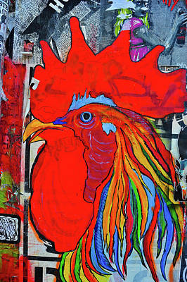 Photograph - Red Rooster by Harry Spitz
