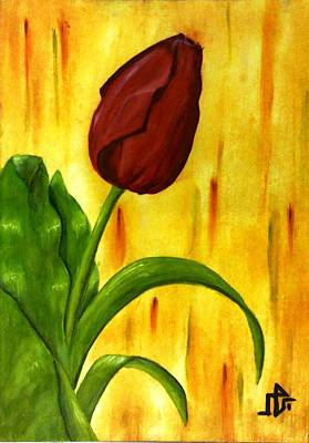 Red Rose Print by Baraa Absi