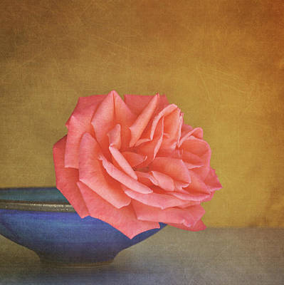 Gold Color Photograph - Red Rose by Photo - Lyn Randle