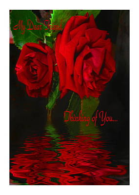 Photograph - Red Rose Reflected  Dear Friend Thinking Of You by Joyce Dickens