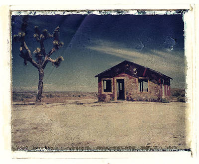 Photograph - Red Shack And Joshua Tree by Joe  Palermo