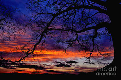 Red Sky At Morning Art Print by Thomas R Fletcher