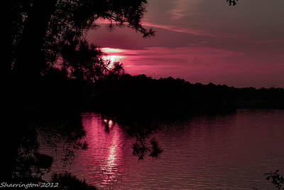 Photograph - Red Sky At Night by Shannon Harrington
