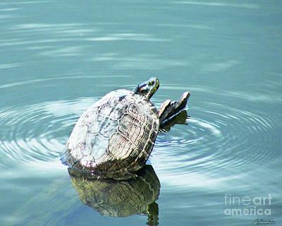 Digital Art - Red Slider Turtle by Lizi Beard-Ward