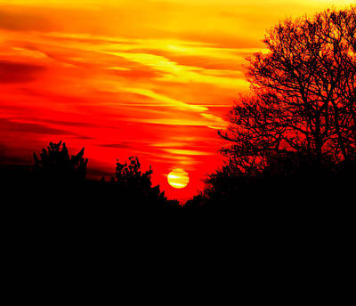 Red Sunset Art Print by Jasna Buncic