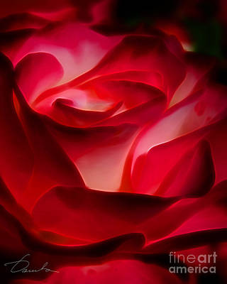 Photograph - Red Symphony by Danuta Bennett