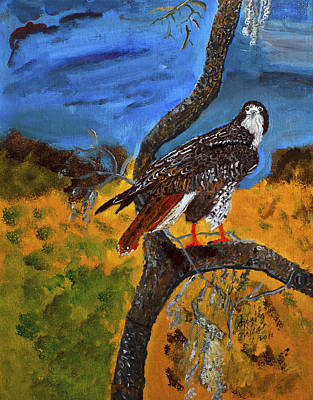 Painting - Red-tailed Hawk Perch In Tree by Swabby soileau