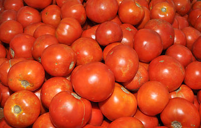 Art Print featuring the photograph Red Tomatoes by Diane Lent