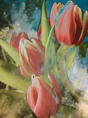 Photograph - Red Tulips Blue Water by Barbara Middleton