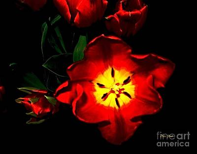 Digital Art - Red Tulips by Dale   Ford