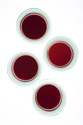 Tasting Photograph - Red Wine Glasses by Frank Tschakert