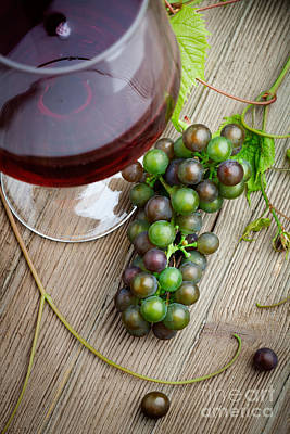 Photograph - Red Wine With Grapes by Kati Finell