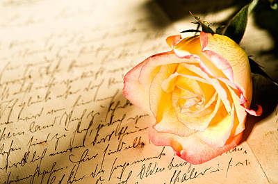 Red Yellow Rose Over A Hand Written Letter Print by Ulrich Schade