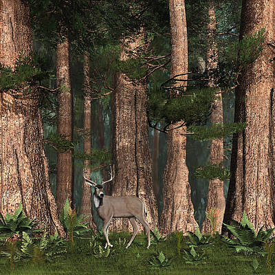 Digital Art - Redwood Buck by Walter Colvin