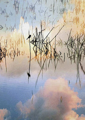 Digital Art - Reed Bird by Sharon Foster