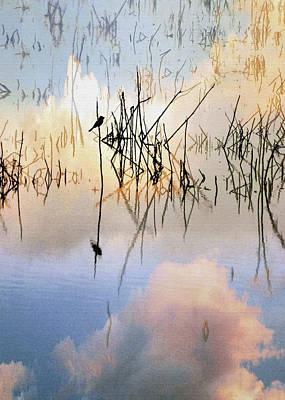 Digital Art - Reed Bird by Sharon Foster