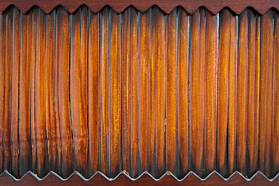 Bamboo Wall Photograph - Reed Wood by Tom Gowanlock