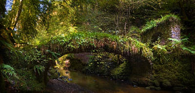 Photograph - Reelig Bridge And Grotto by Joe Macrae