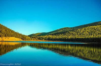 Photograph - Reflect by Shannon Harrington